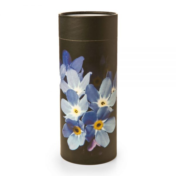 Forget Me Not Scattering Cylinder