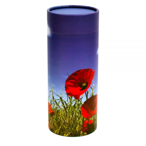 Poppy Scattering Cylinder