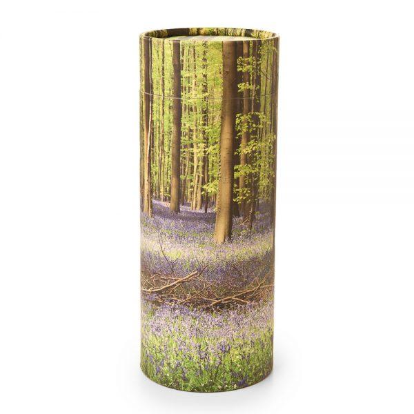 Bluebell Forest Scattering Cylinder